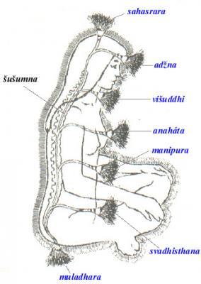 Mapa kundalini a čaker